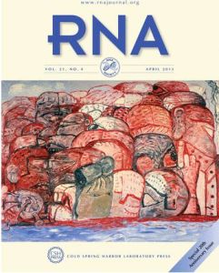 RNA journal front cover cropped